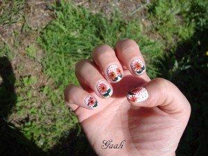 dsc03761-300x225 fleurs roses