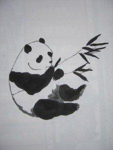 259893_panda